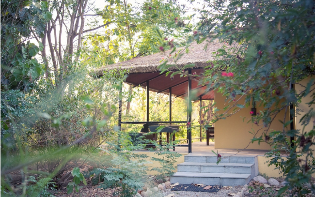Jungle Family Cottage